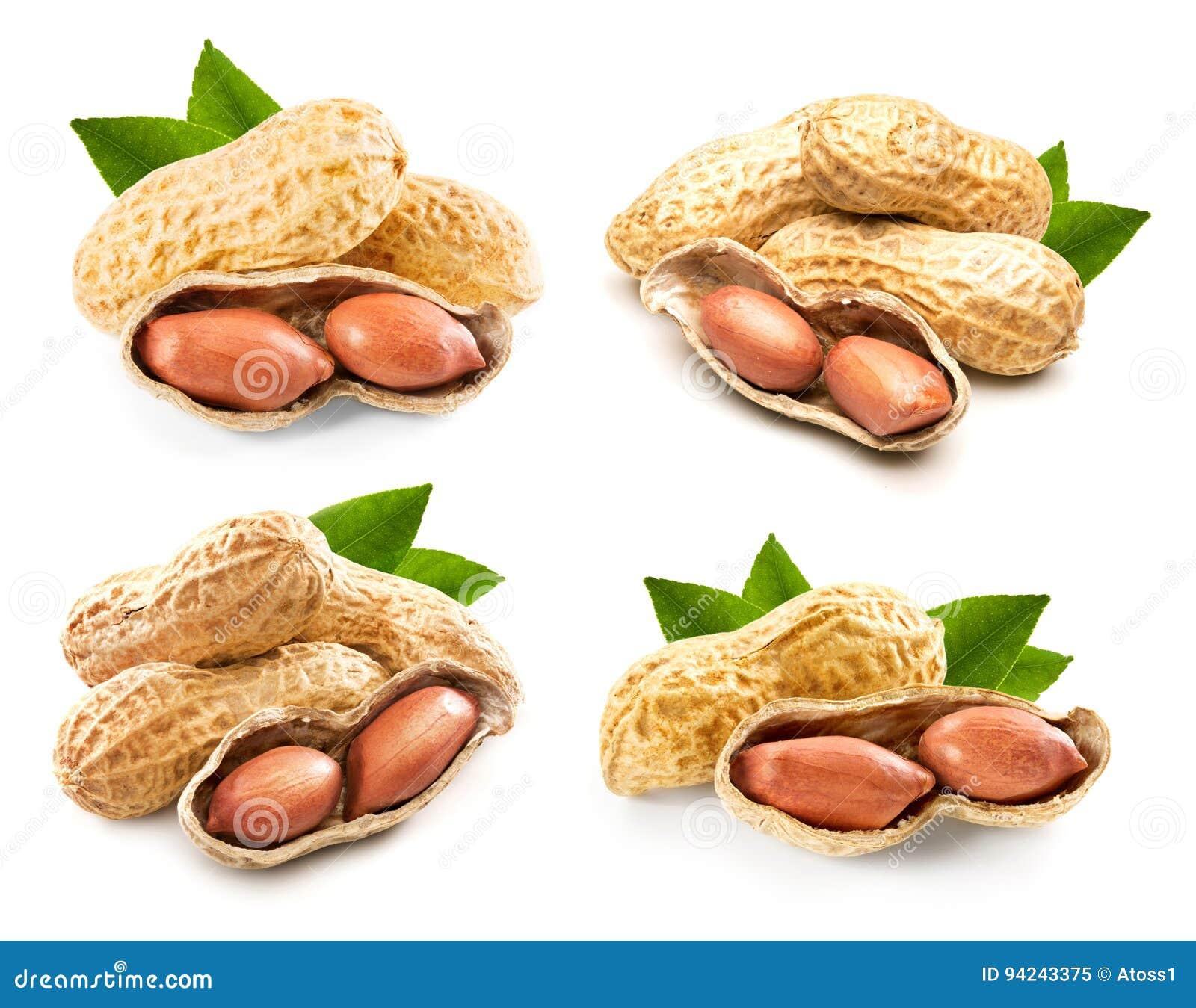 Collection de pistaches