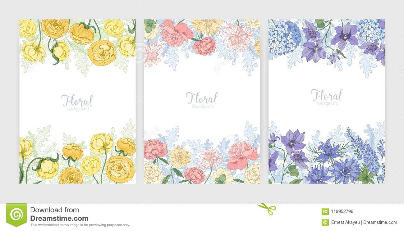 Collection Of Floral Backgrounds Or Card Templates With Frames