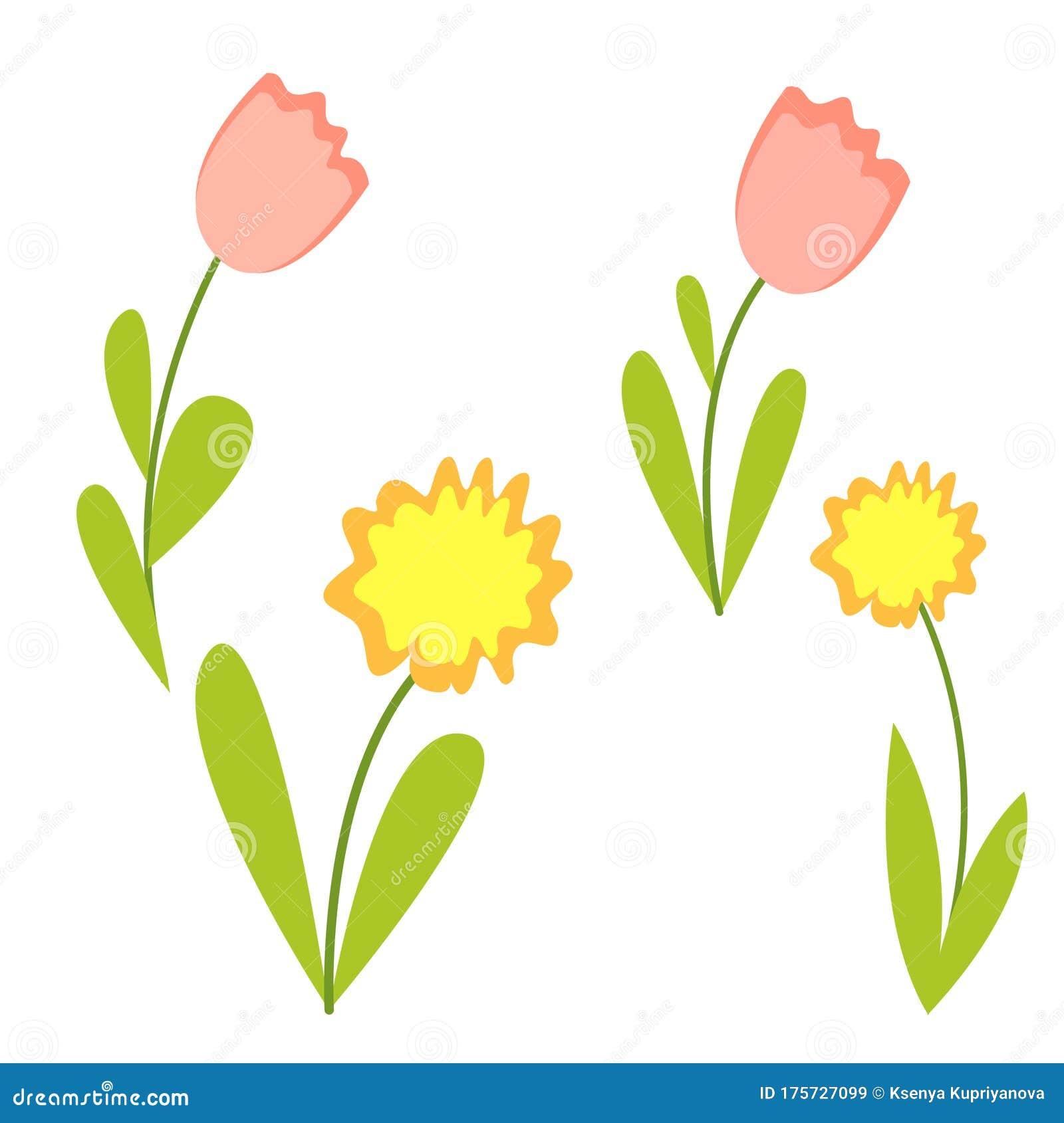 Cartoon Daffodils Flower Stock Illustrations 190 Cartoon Daffodils Flower Stock Illustrations Vectors Clipart Dreamstime