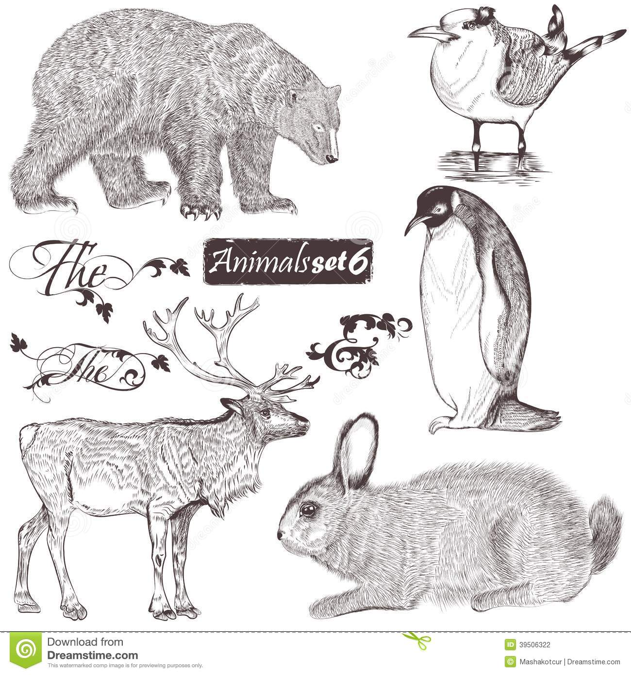 Collection of high detailed animals
