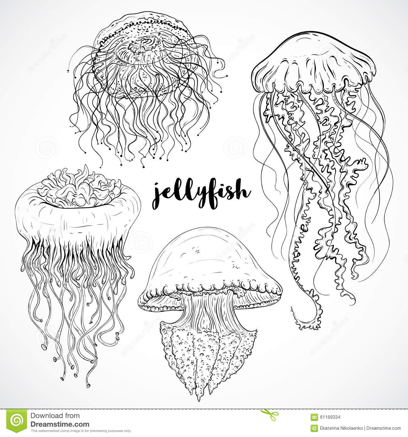 Collection of jellyfish. Vintage set of black and white hand drawn marine fauna. vector illustration