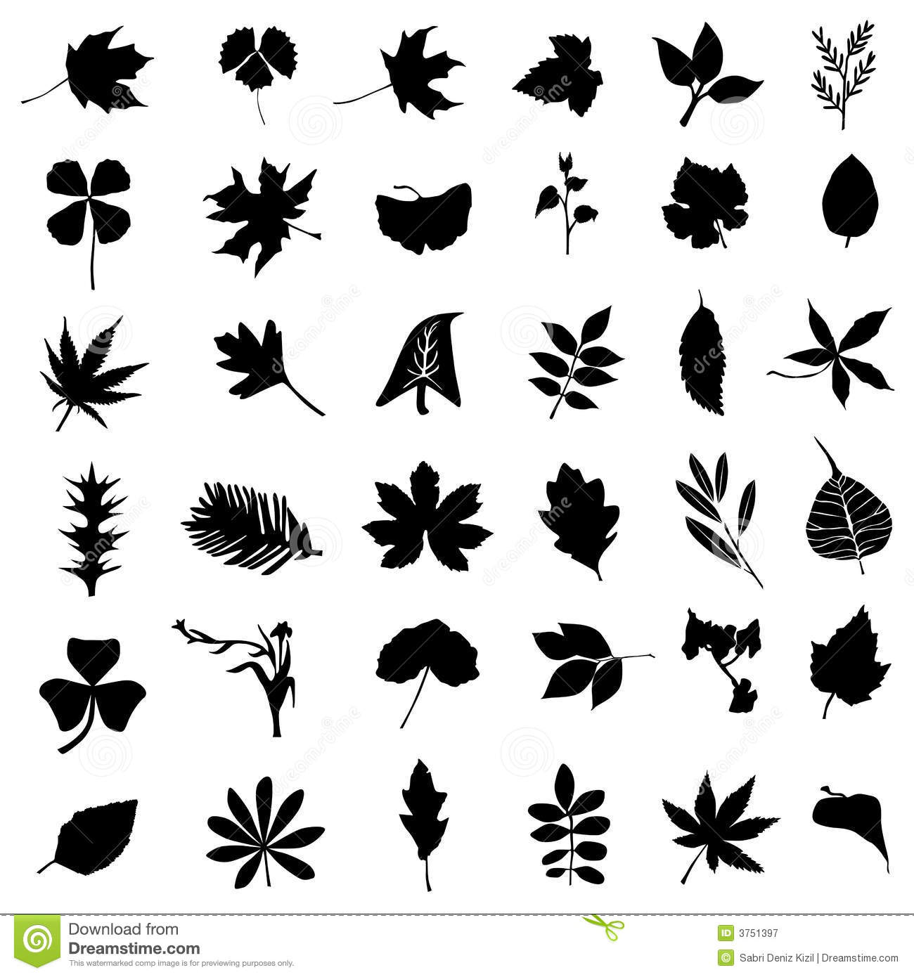 The Skull Mark 371571666 also Pas Clipart furthermore Shopkins Coloring Pages in addition Black And White Butterfly Tattoos Designs as well 1716642. on pictures of leaves cartoon