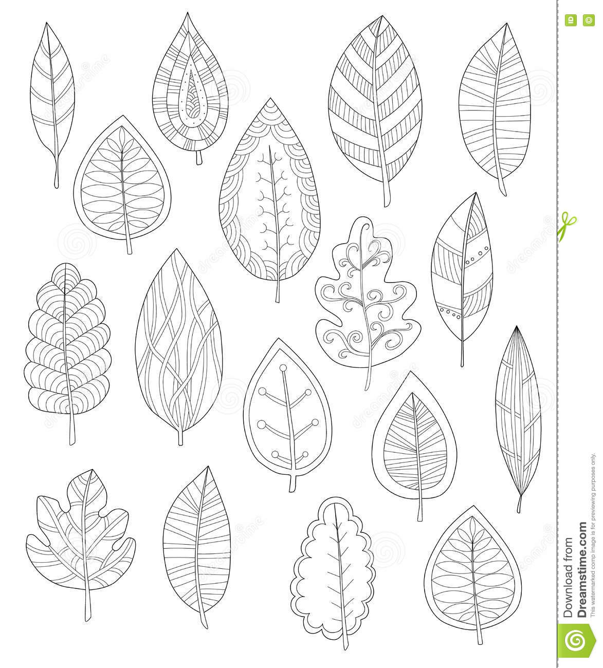 collection of leaves for coloring pages stock illustration image