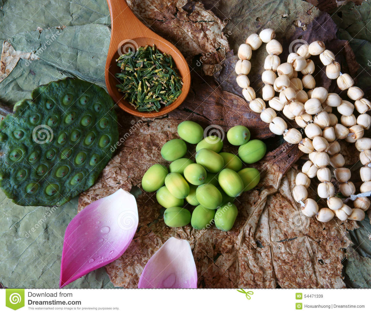 Collection Lotus Flower Seed Tea Healthy Food Stock Image Image
