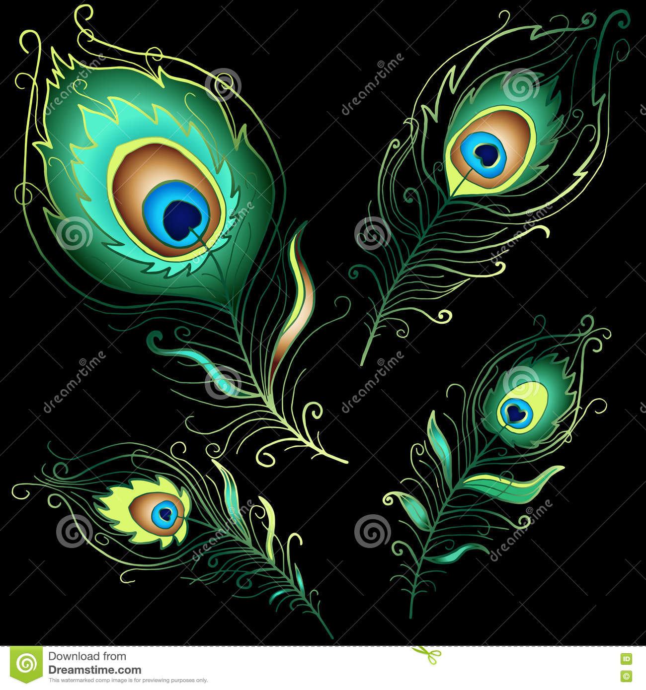 Collection Of Peacock Feathers Stock Vector - Illustration of
