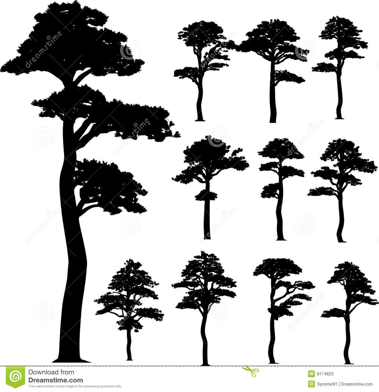 Vector Illustration Tree: Collection (pine) Vector Trees Stock Vector