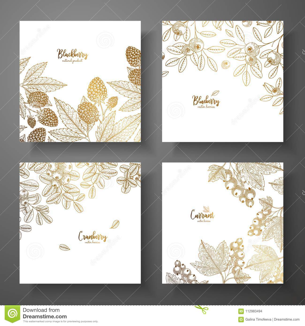 Collection of square gold cards with berries. Vector vintage frame with blackberry, bluberry, cranberry, currant. Great