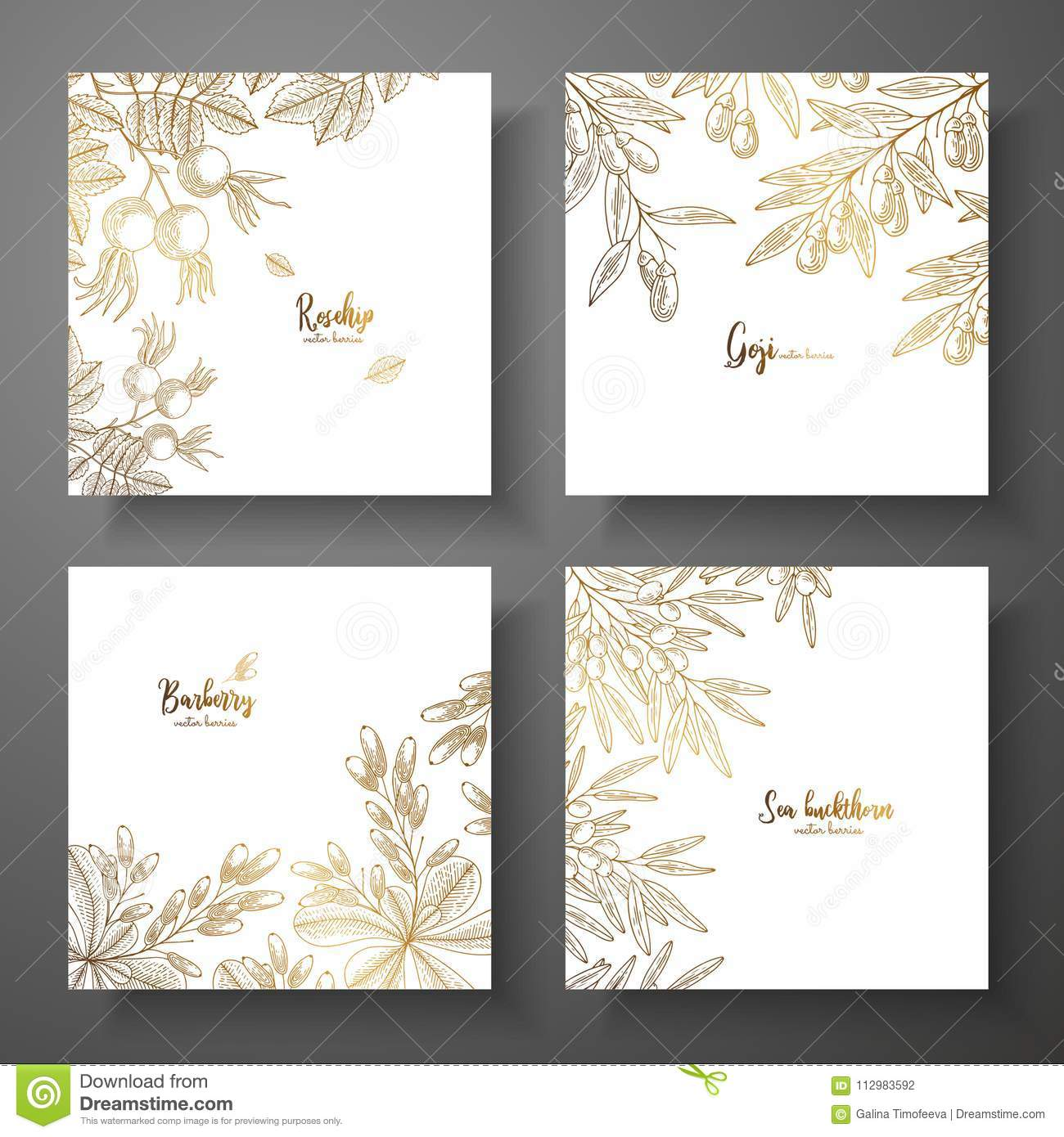 Collection of square gold cards with berries. Vector vintage frame with rosehip, goji berries, barberry, sea buckthorn