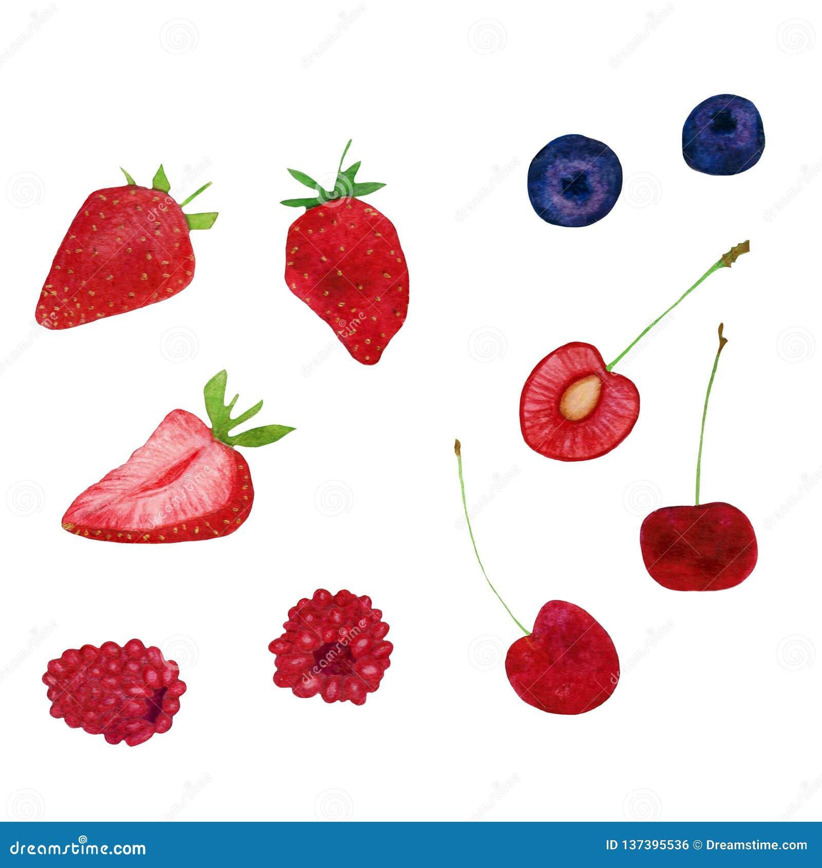Collection strowberry douce fraîche de myrtille de framboise d été