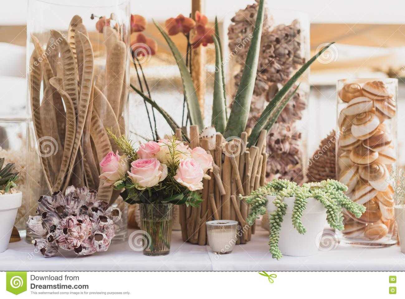 Collection Of Table Decoration Stock Image Image Of Succulents Brown 76180367