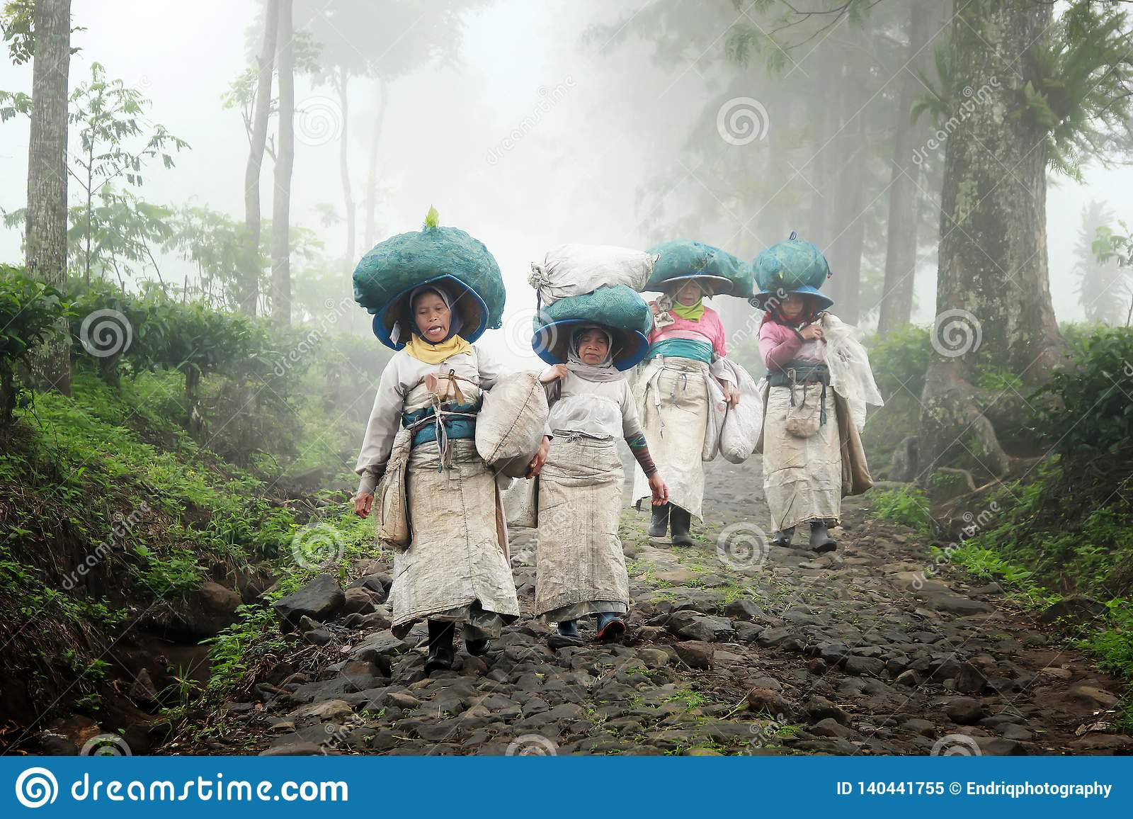 A collection of tea picking farmers in Indonesia