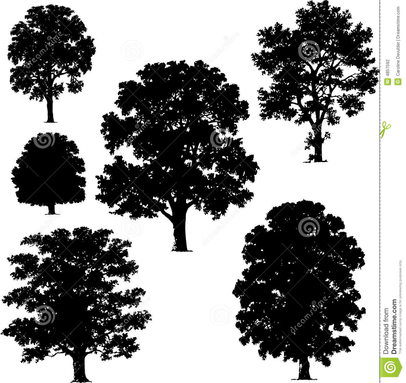 Vector Illustration Tree: Collection Of Tree Vectors Stock Vector. Illustration Of