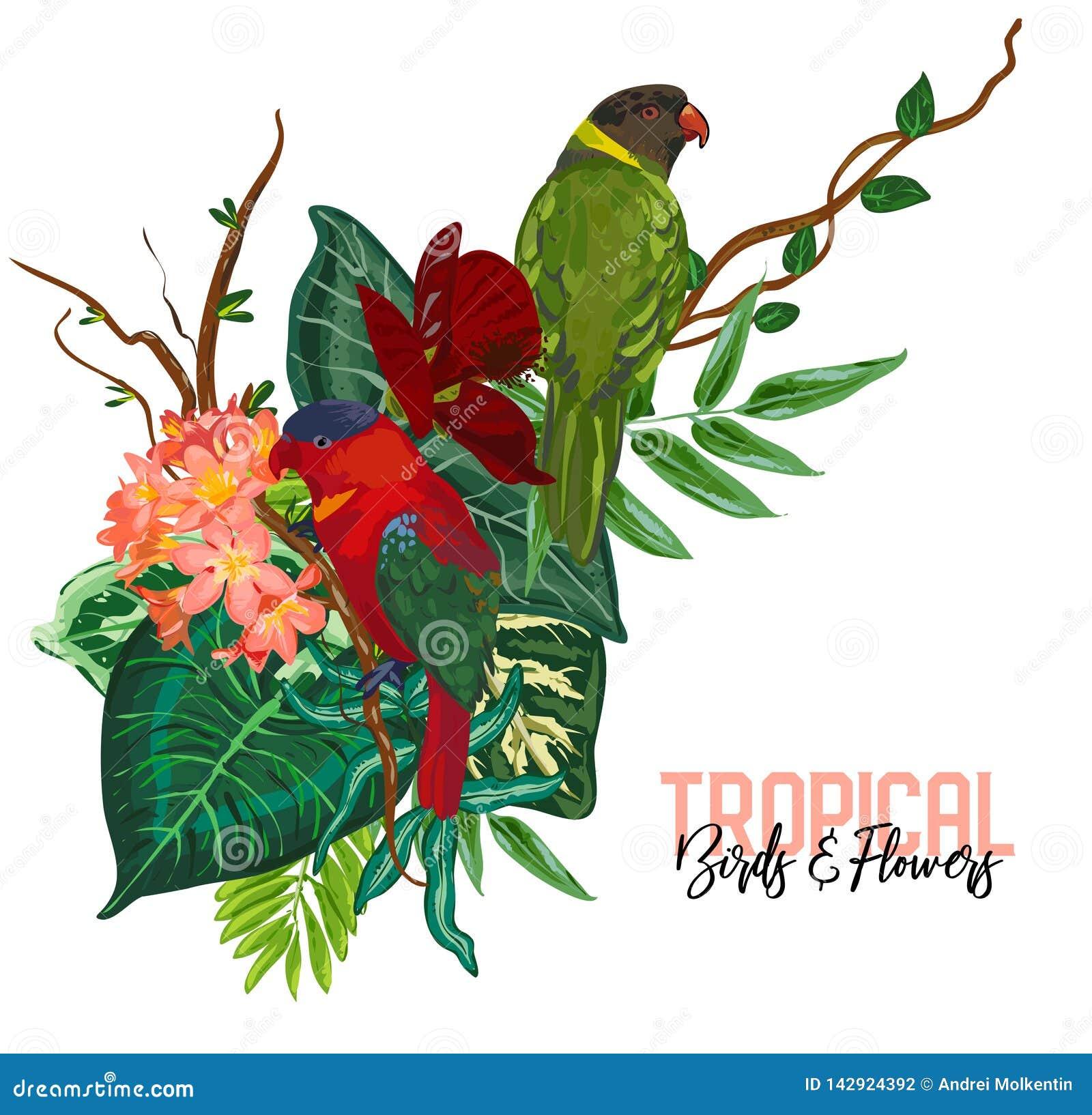 Collection tropicale de vecteur avec les fleurs, les feuilles et les oiseaux exotiques