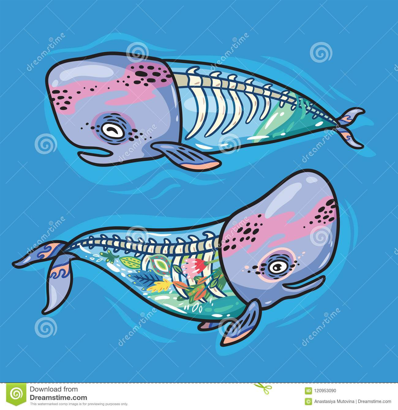 Floral Anatomy Whales In Cartoon Style Vector Illustration Stock