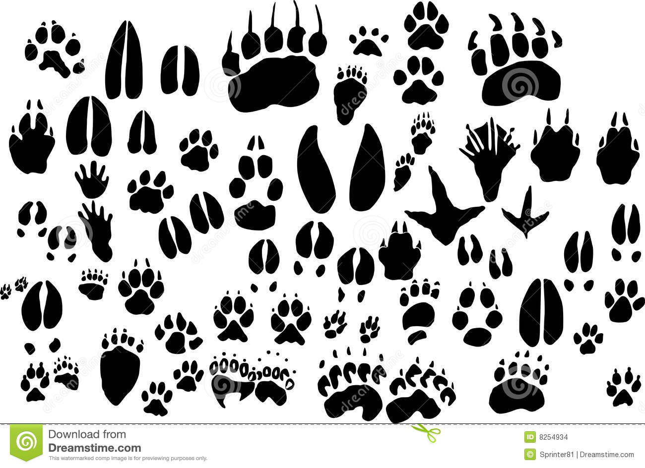 Collection Of Vector Outlines Of Animal Foot Print Stock Vector