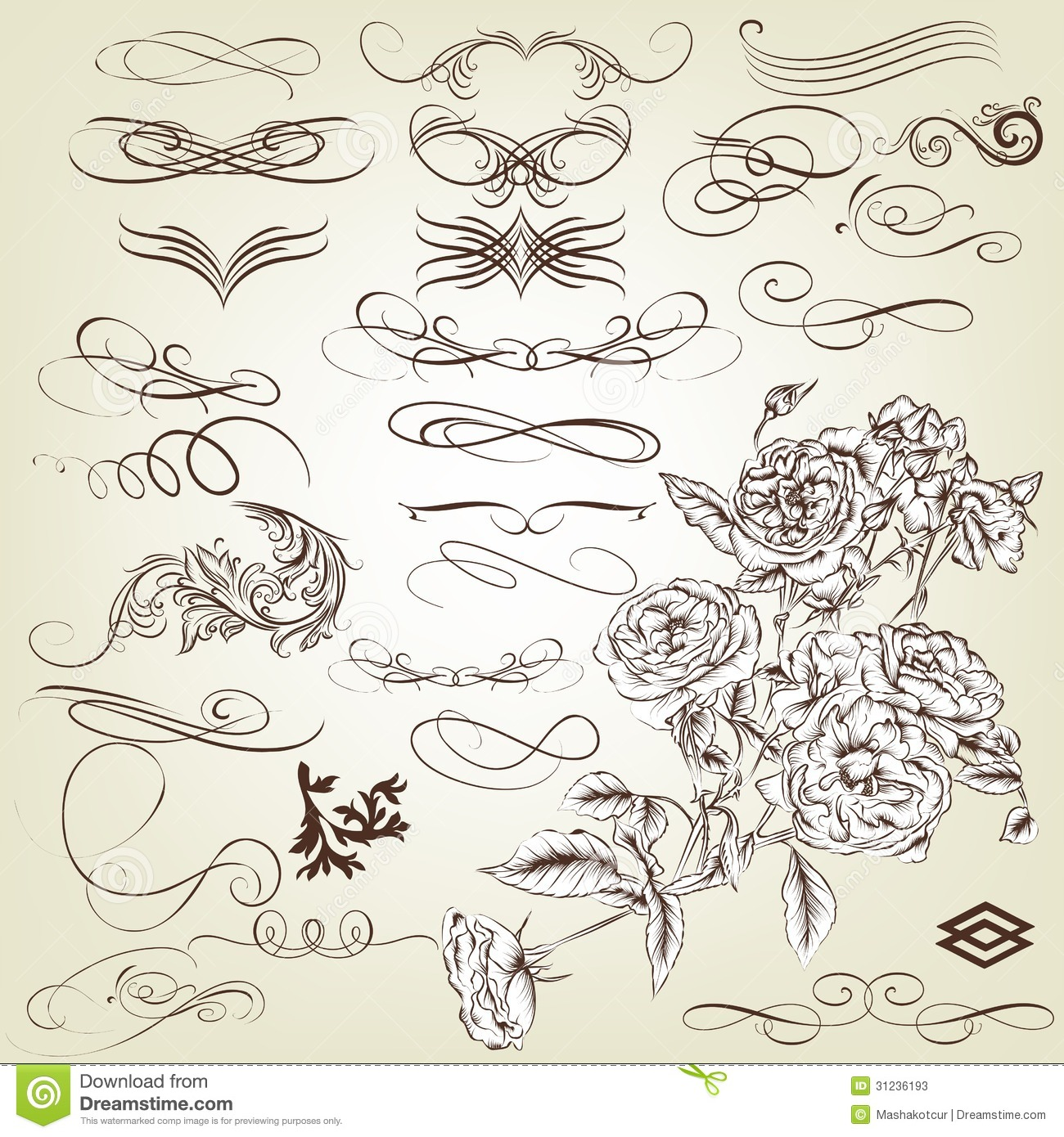 Collection of vintage calligraphic design elements and