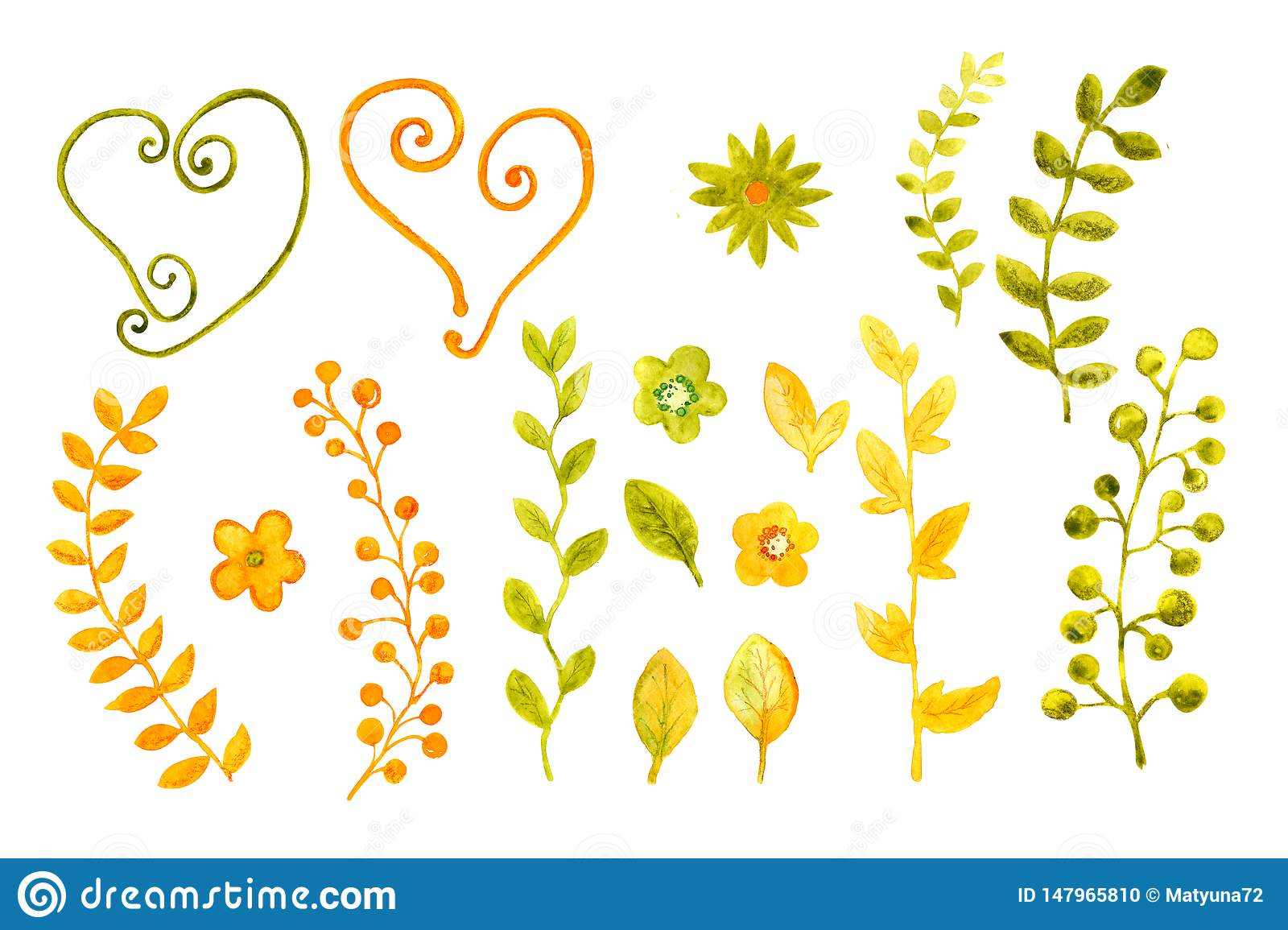 Collection of watercolors of flowers and leaves. For cover design, packaging, backgrounds