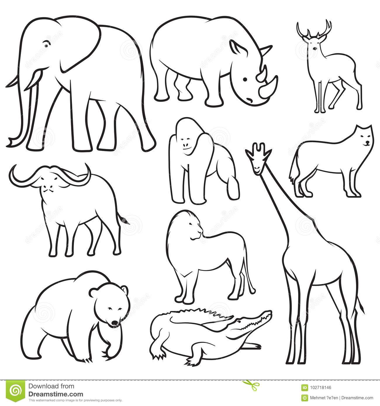 Collection of wild animals sketches
