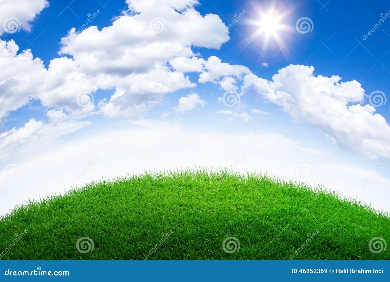 Collina dell erba verde