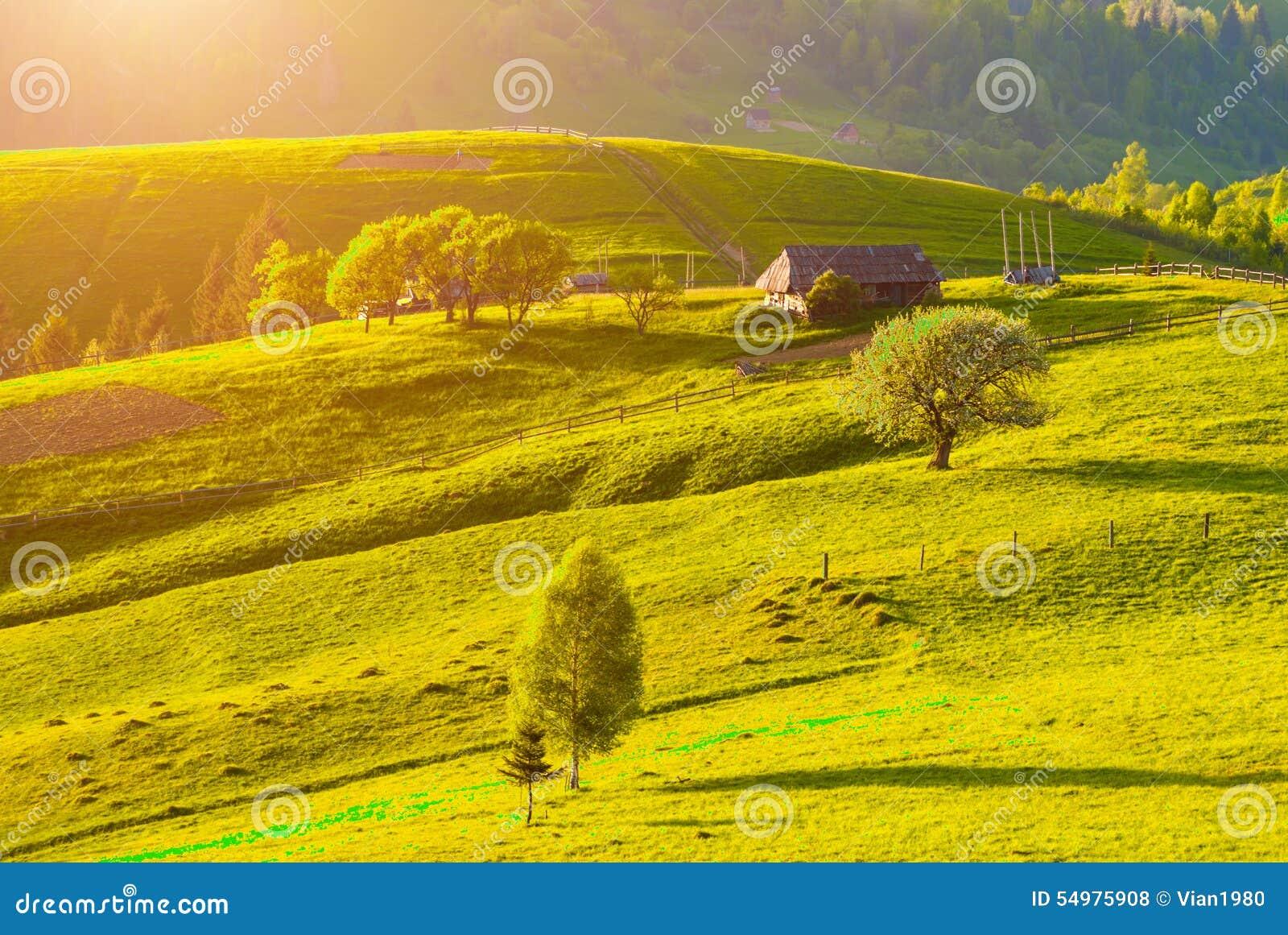 Colline carpatiche del villaggio