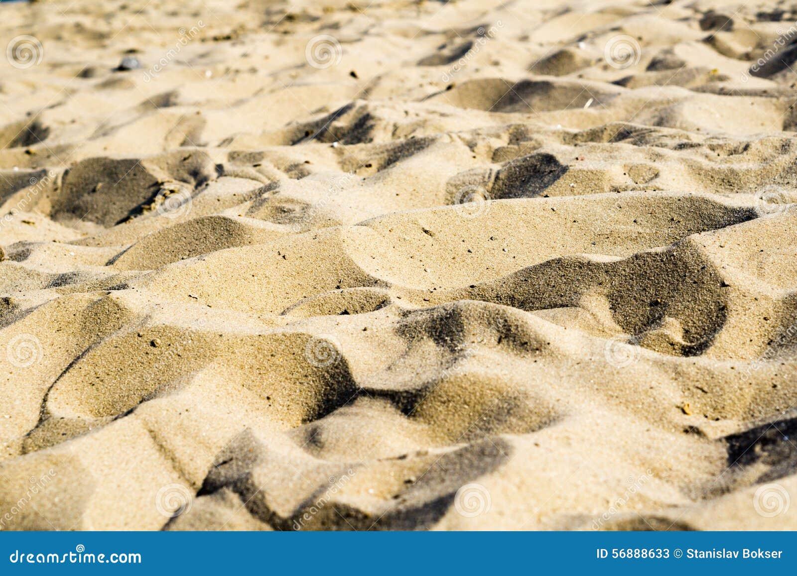 Colline della sabbia sulla spiaggia