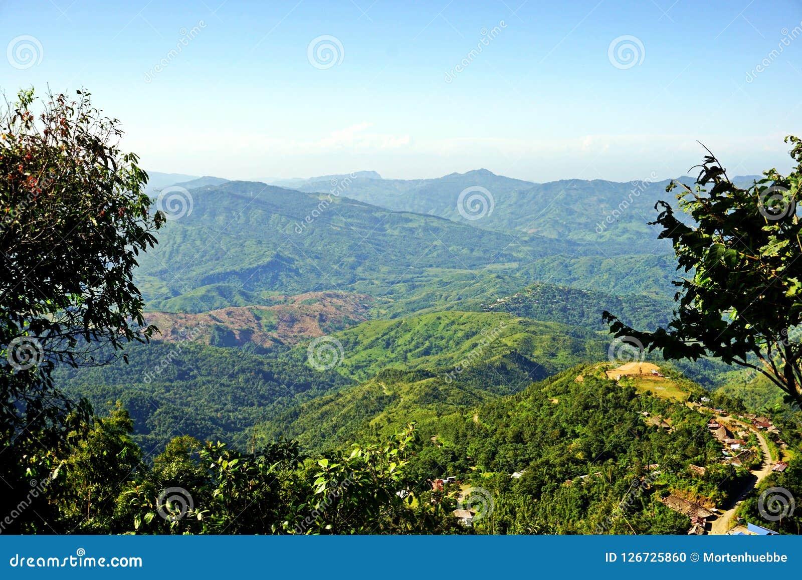 Colline fertili del Nagaland, area tribale, India di nordest