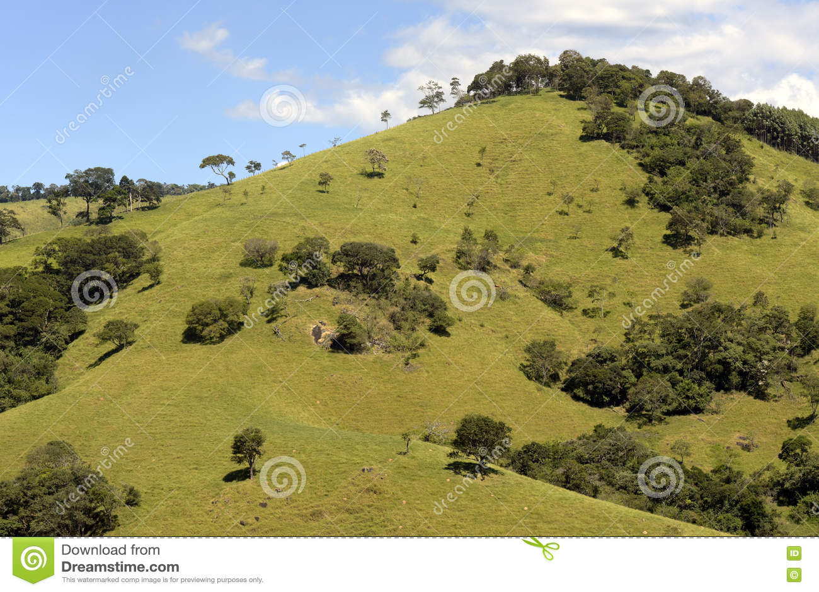 Colline verdi al crepuscolo