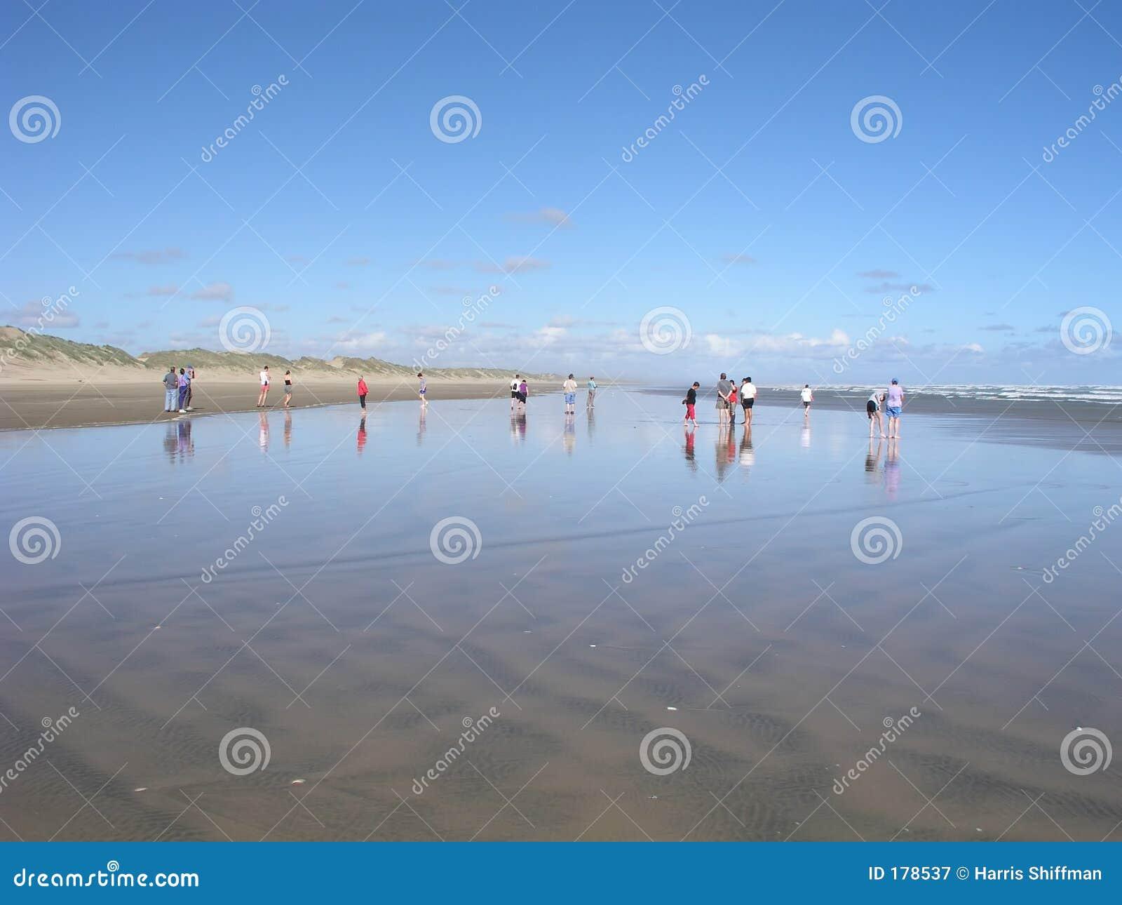 Colocación en la playa