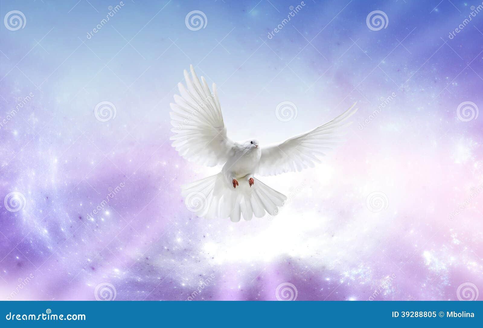 Famoso Colomba di Spirito Santo immagine stock. Immagine di burst - 39288805 ER46