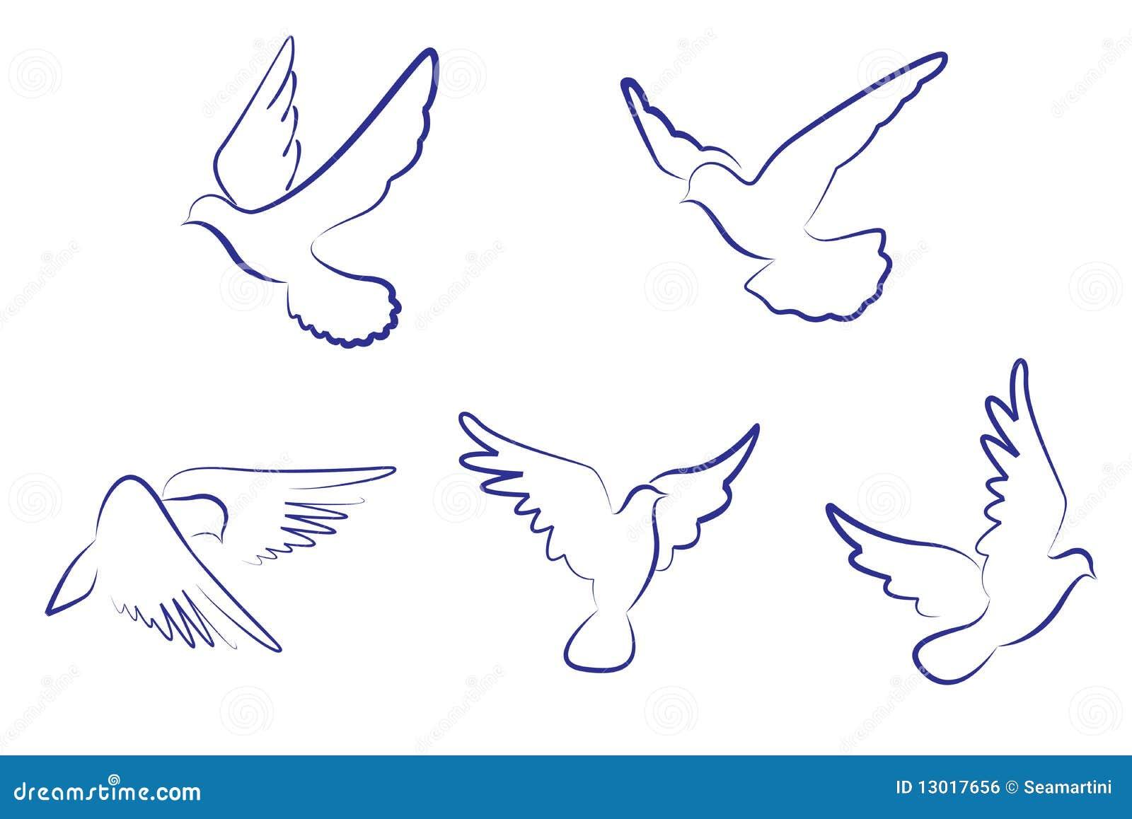 Colombe Bianche Illustrazione Vettoriale Illustrazione Di