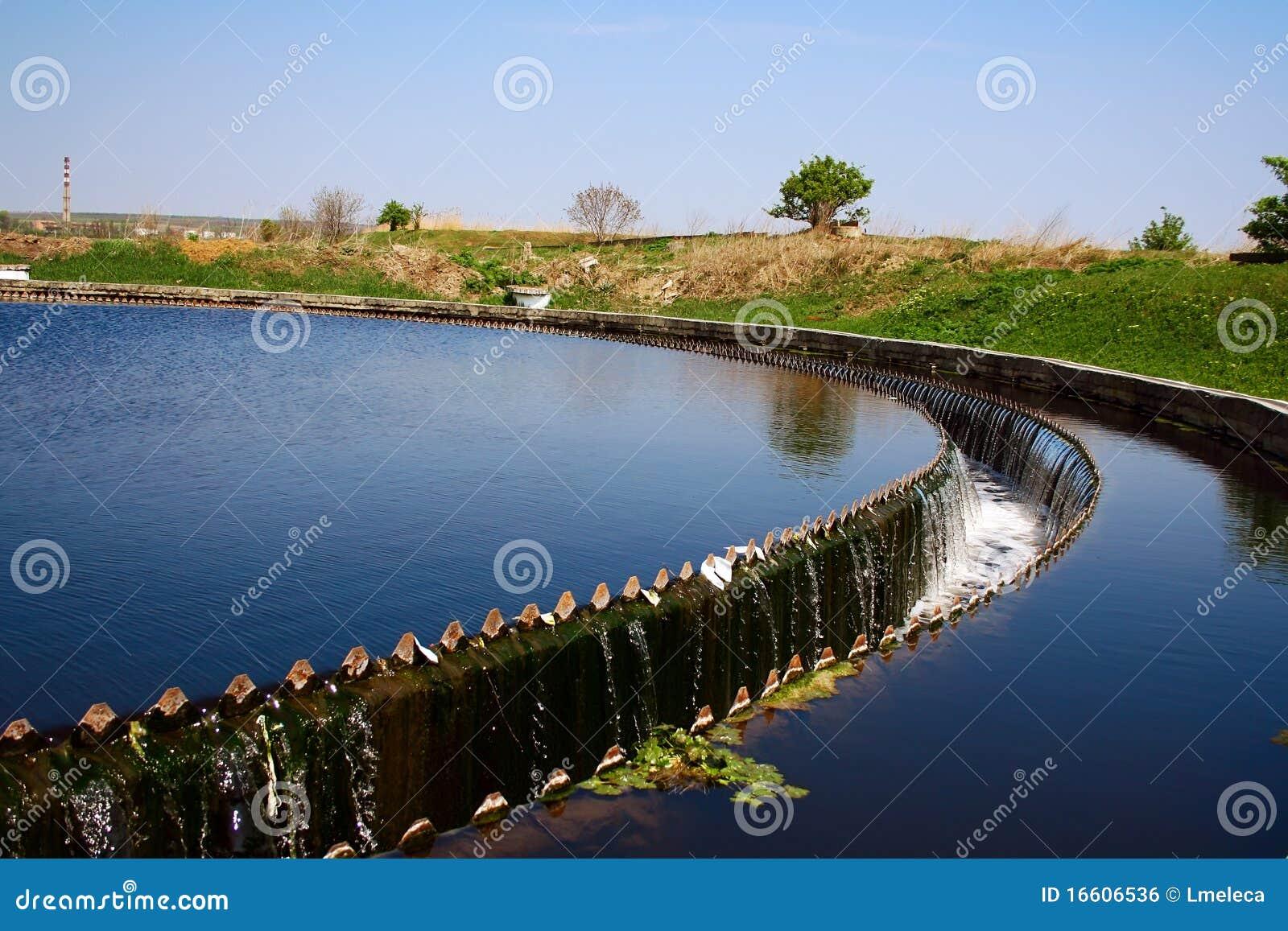 Colono en la depuradora de aguas residuales