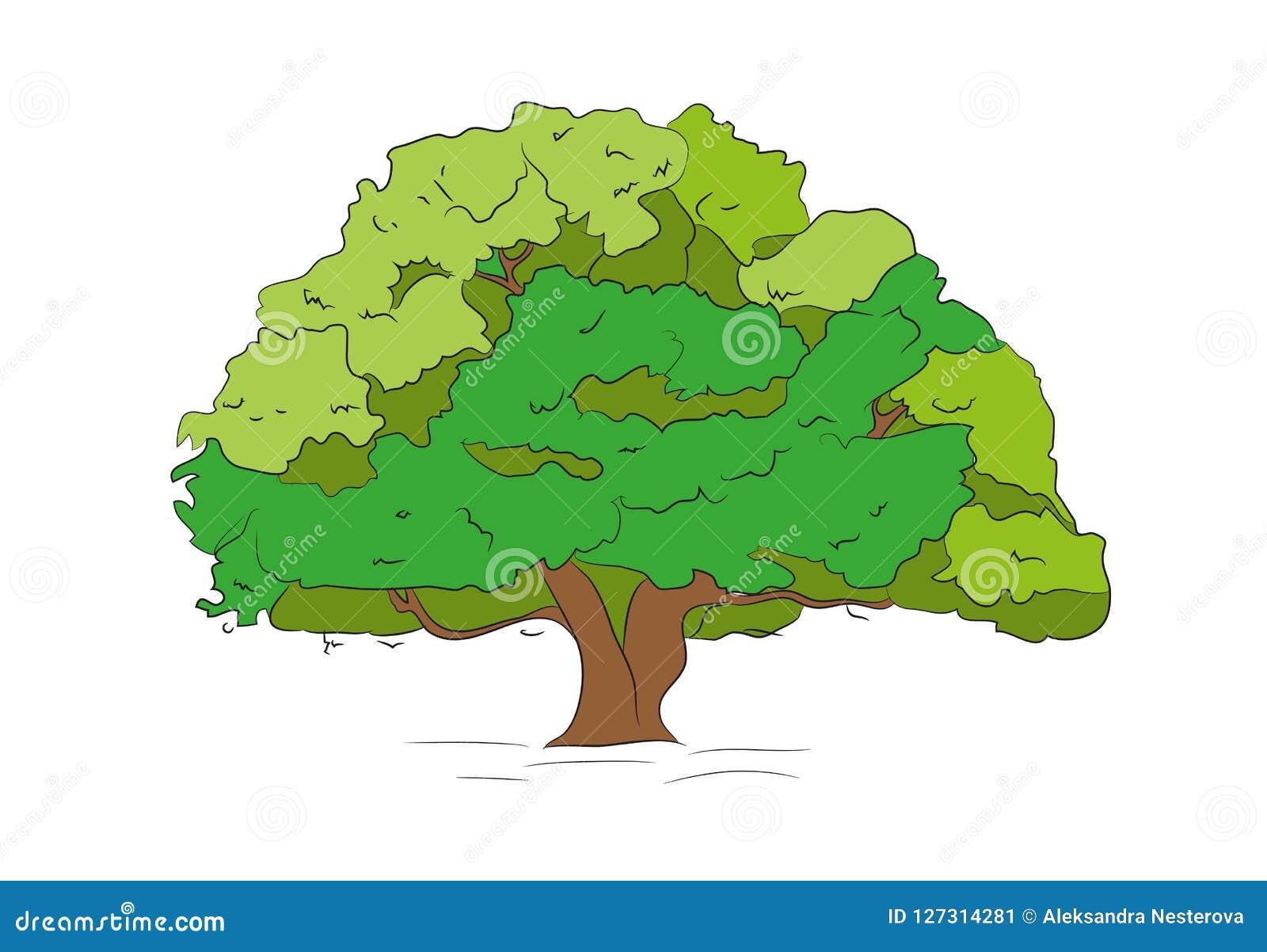 Color De Dibujo Grande Del árbol, Vector, Ilustración del Vector -  Ilustración de árbol, color: 127314281