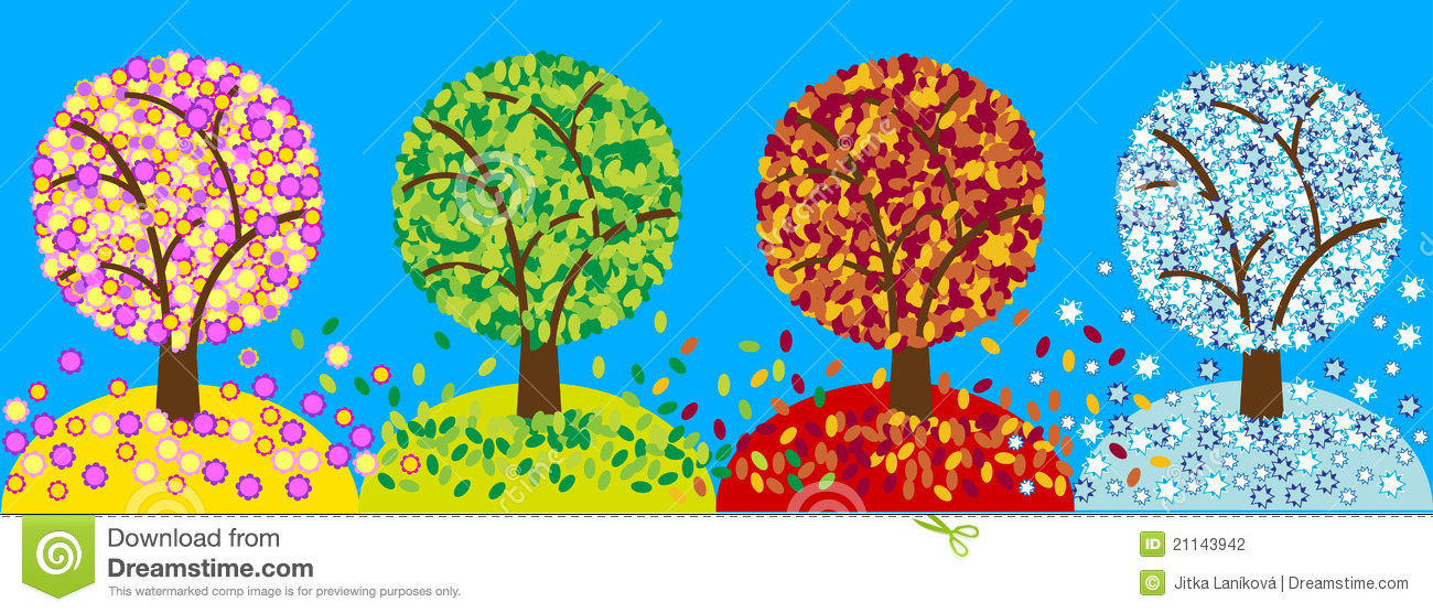 Color Four Seasons Trees Stock Photography Image 21143942
