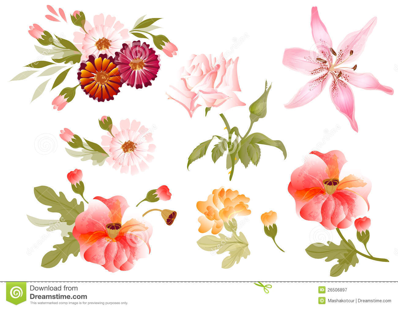 color illustration of flowers in vector paintings stock vector
