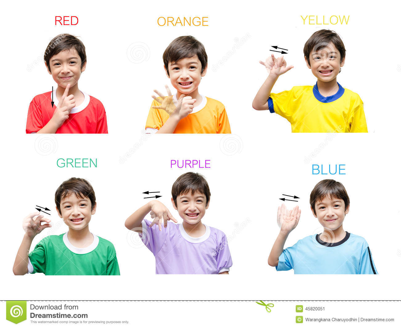 Learn nz sign language