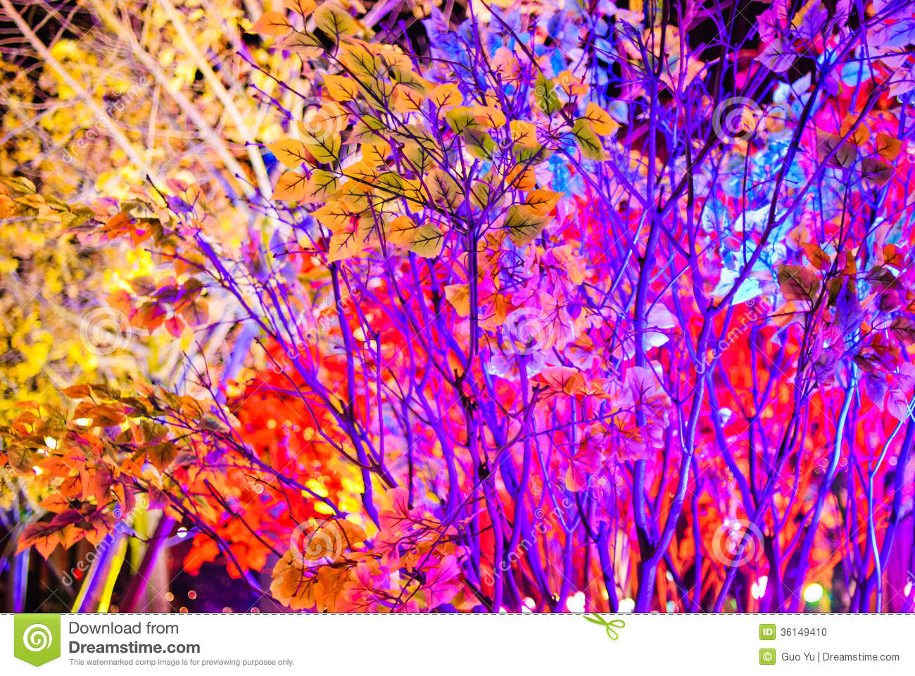 Color Tree Stock Photo Image 36149410