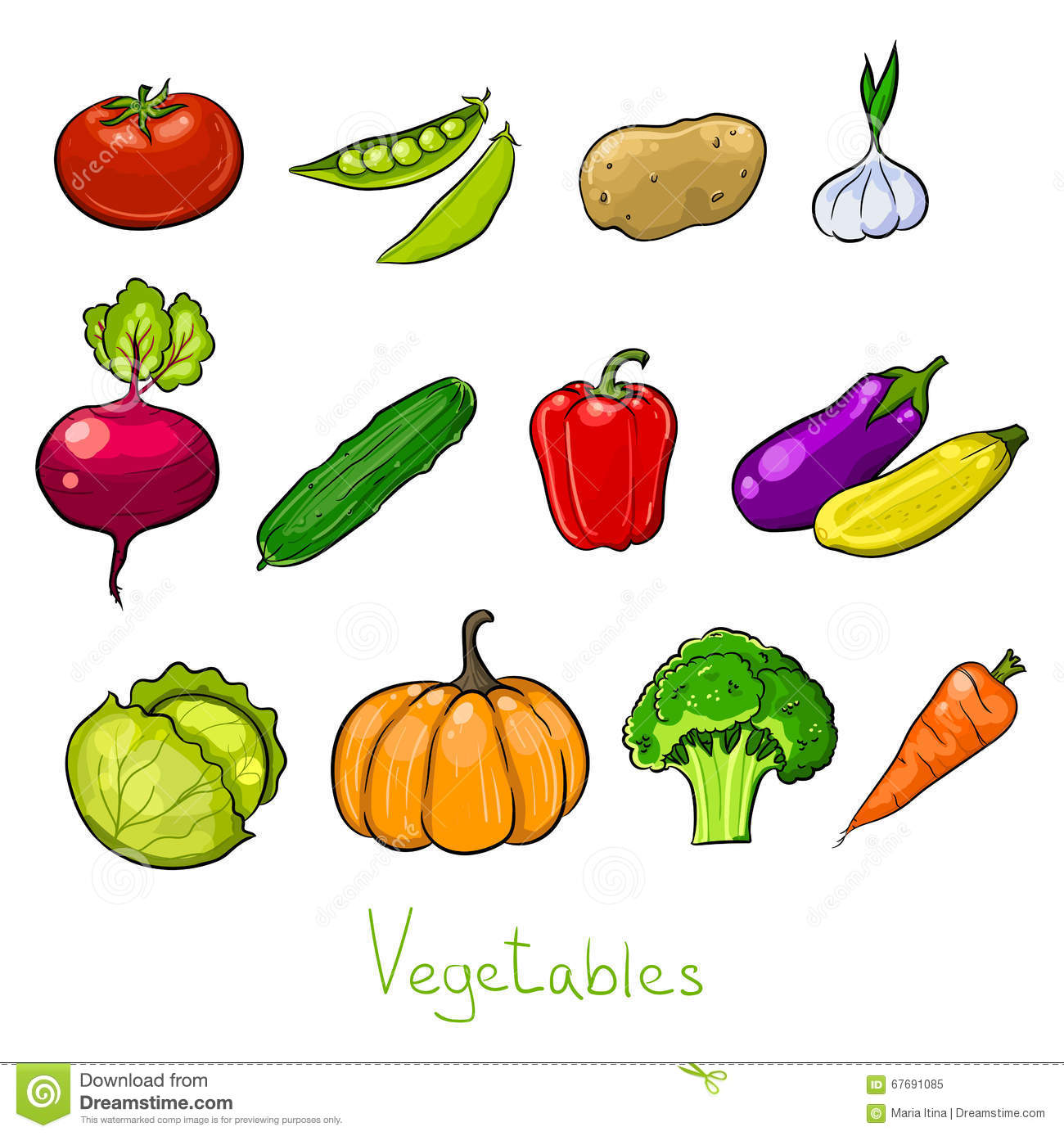 Color vegetables sketches stock vector. Illustration of ...