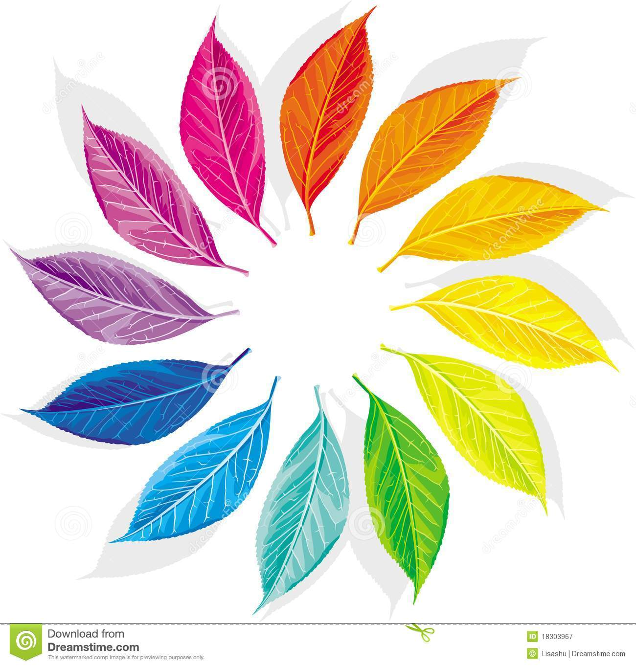 Color Wheel Stock Vector Illustration Of Chromatic Growth 18303967