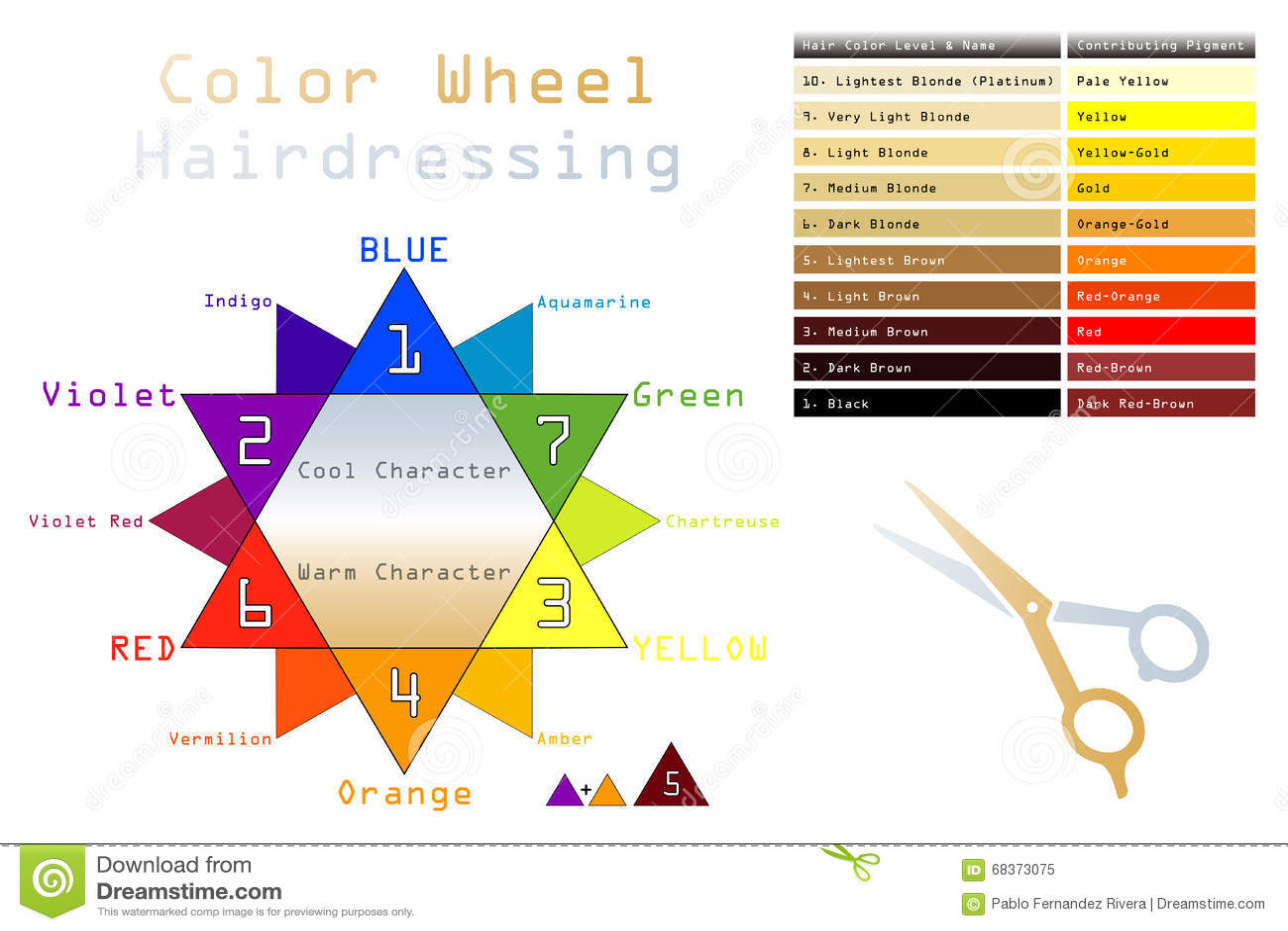 Color Wheel Hairdressing Stock Vector Illustration Of Orange 68373075