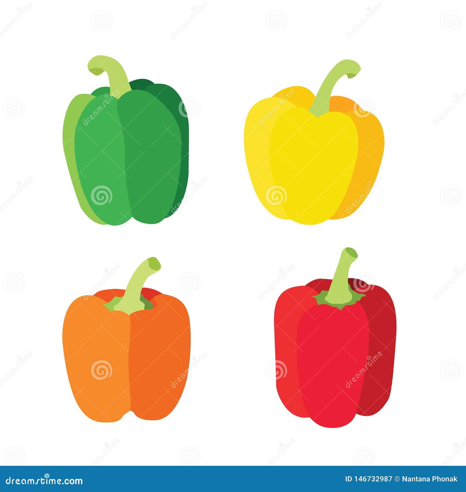 Colora a pimenta de sino verde vermelha alaranjada amarela isolada no vetor branco da ilustração do fundo