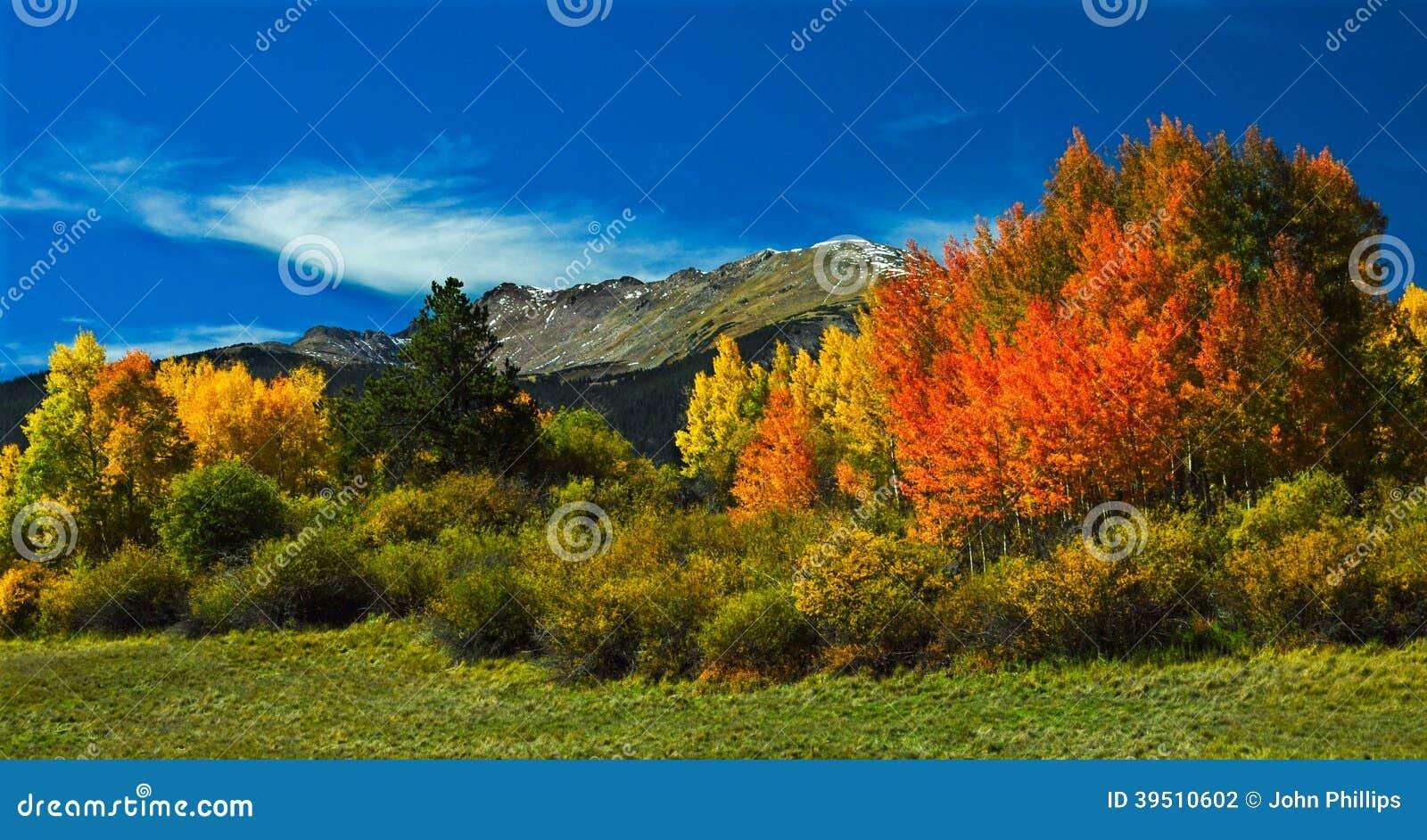 Colorado Autumn 5