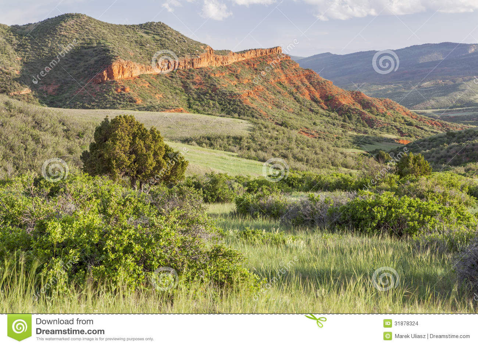 Colorado bergranch