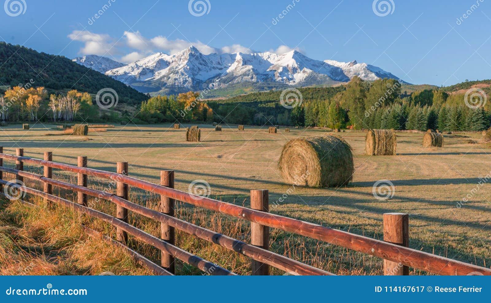 Colorado Hay Bails