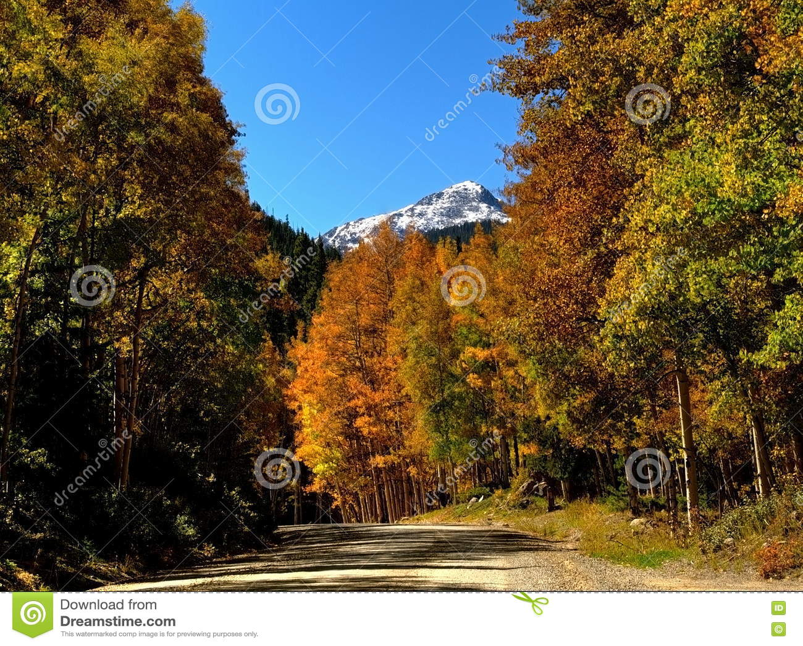 Colorado montering Princeton som inramas i Autumn Colors
