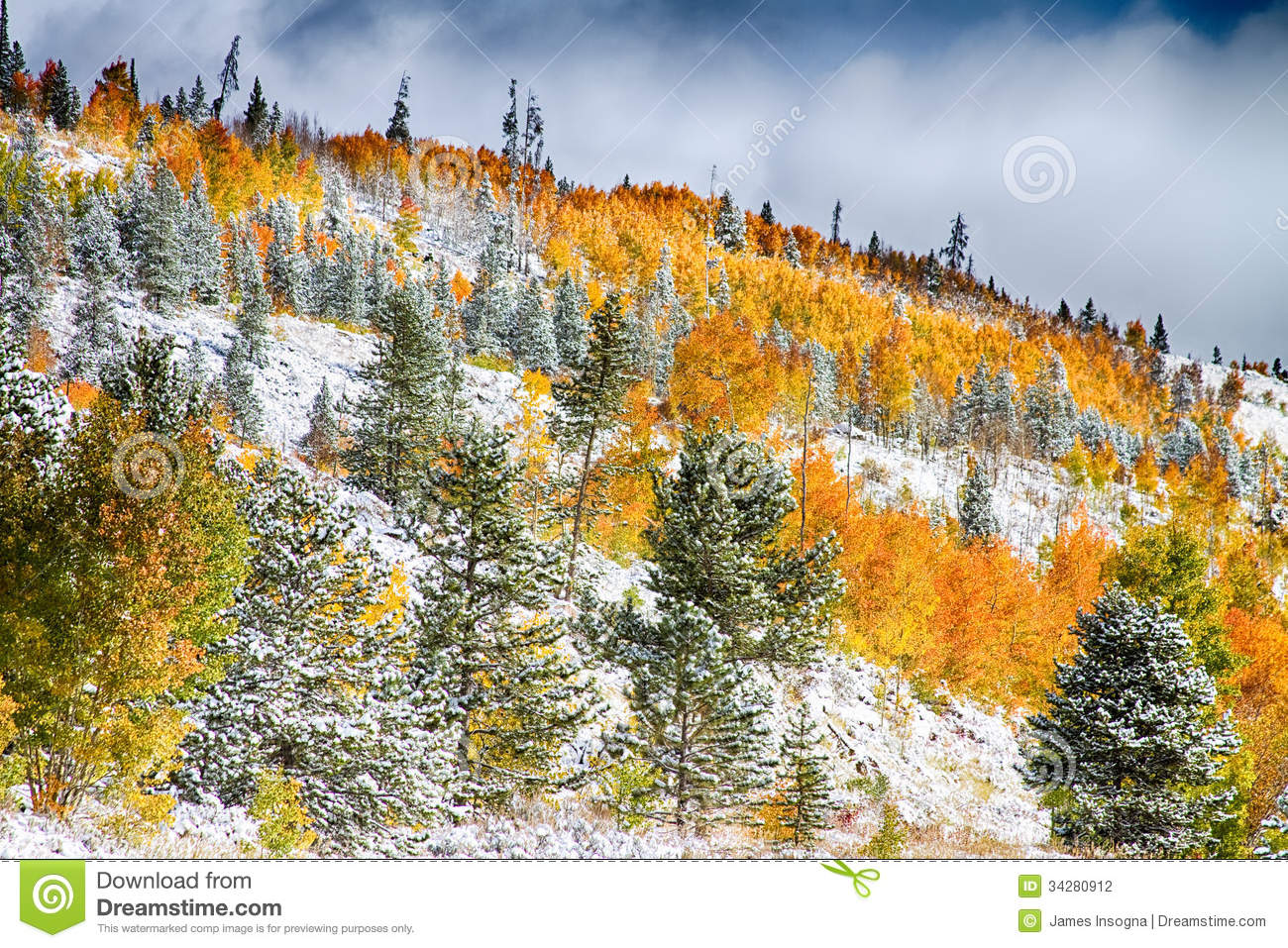 A Snowy Fall Day wallpaper | nature and landscape | Wallpaper Better
