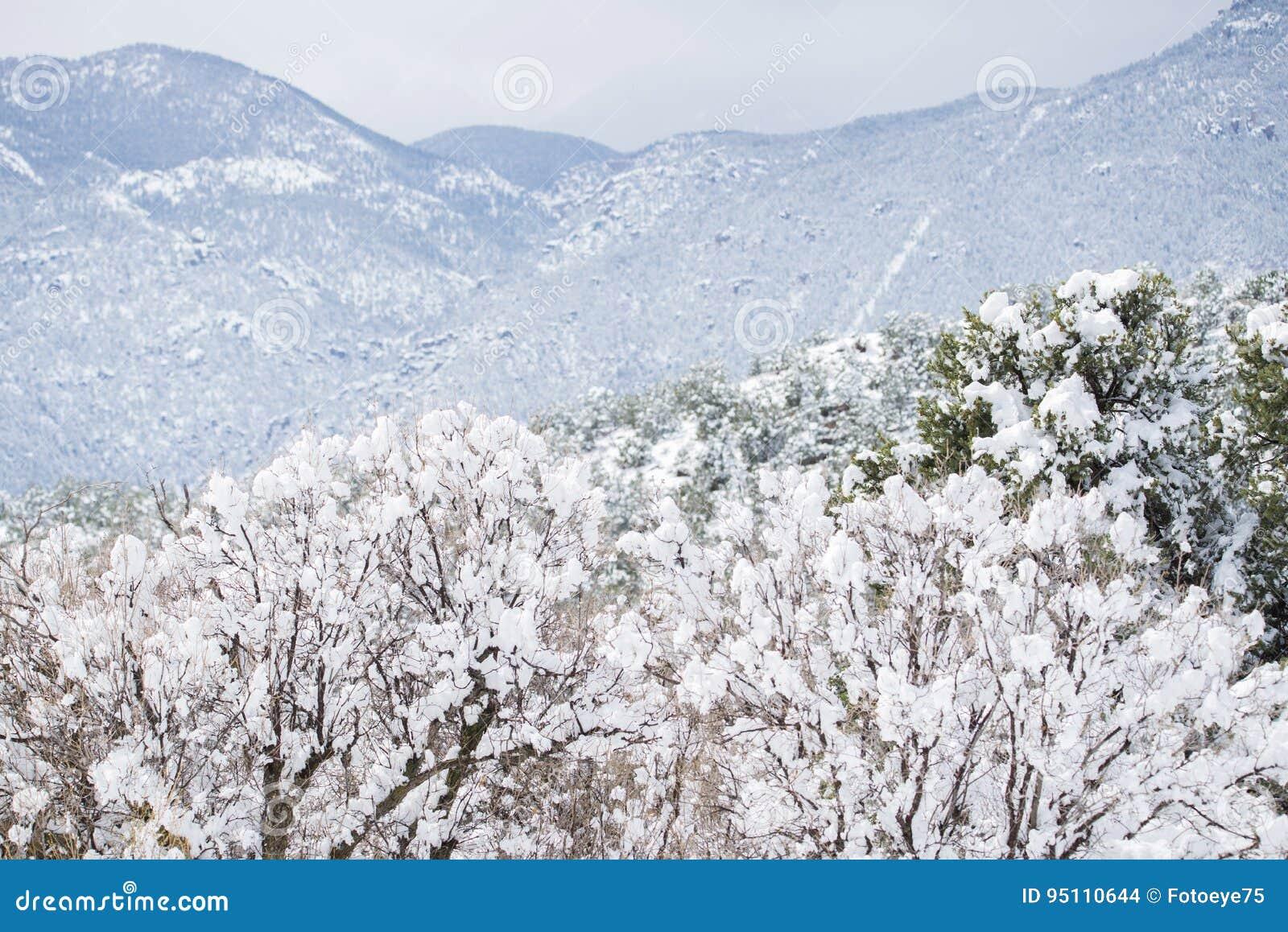 Colorado Springs Pikes Peak Range Winter Snow Stock Photo