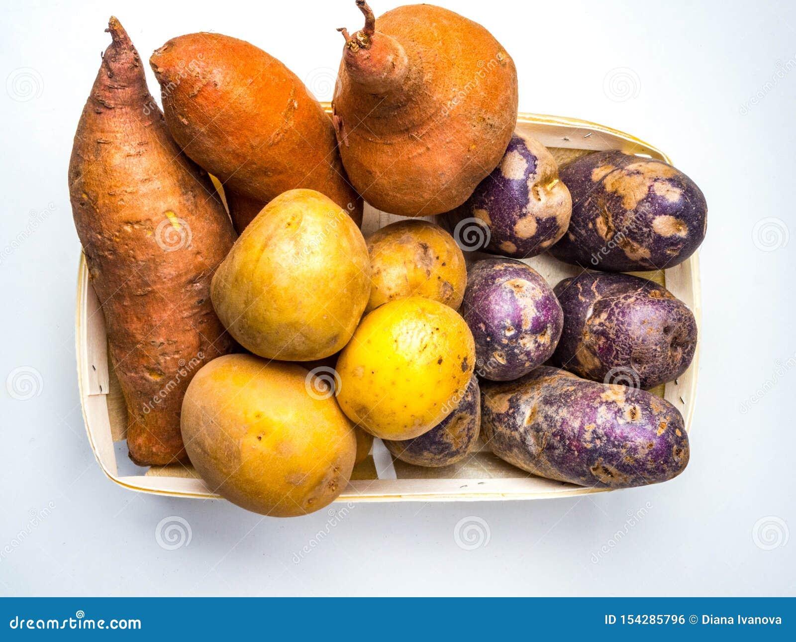 Colore misto giallo, patate arancio porpora, piccolo, tipo tozzo e a forma di dito di patata che può essere tutta la patata di er
