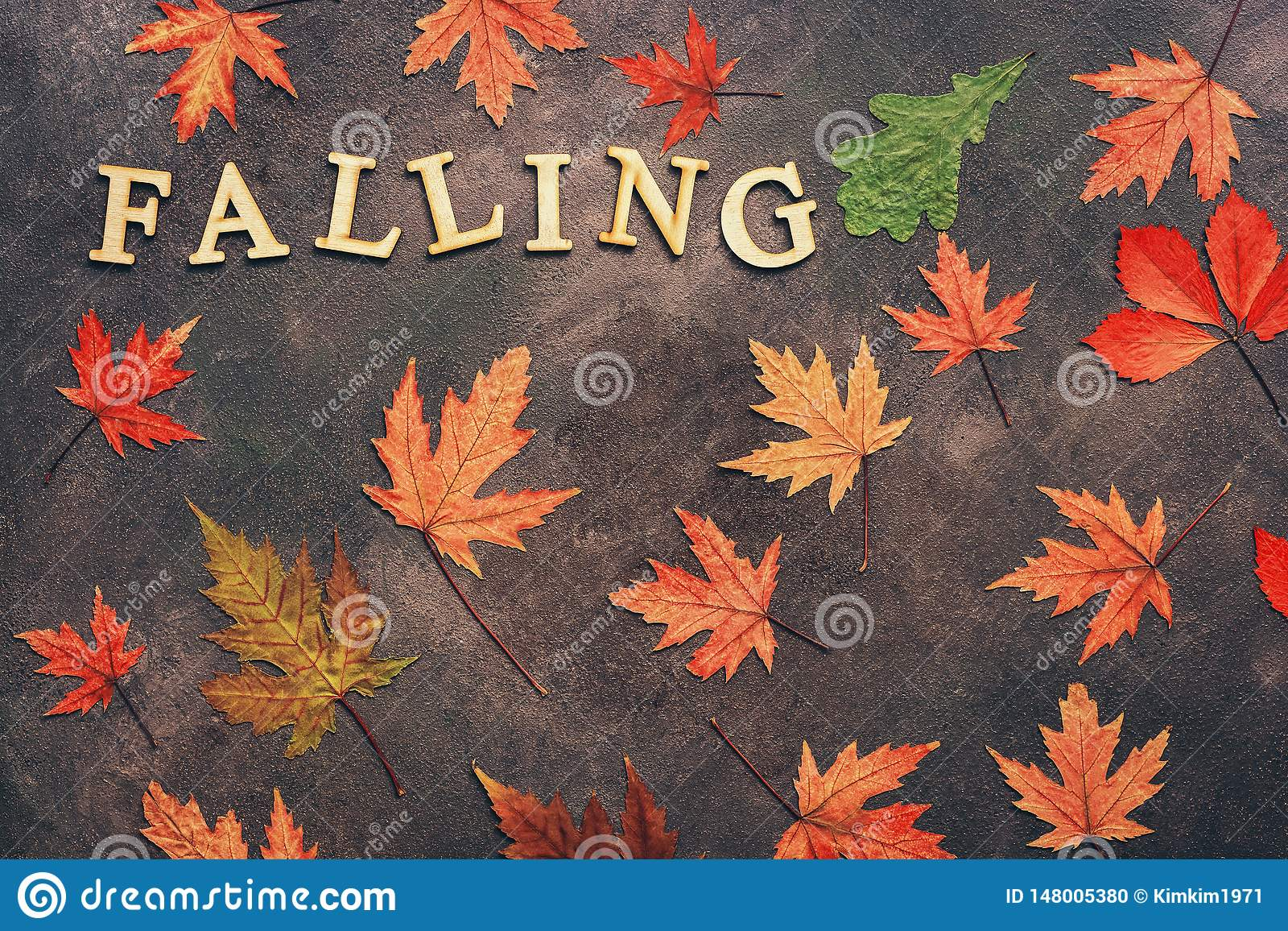 Colored dry autumn leaves on a dark background and the word from wooden letters-falling. Creative autumn layout. Flat lay, copy