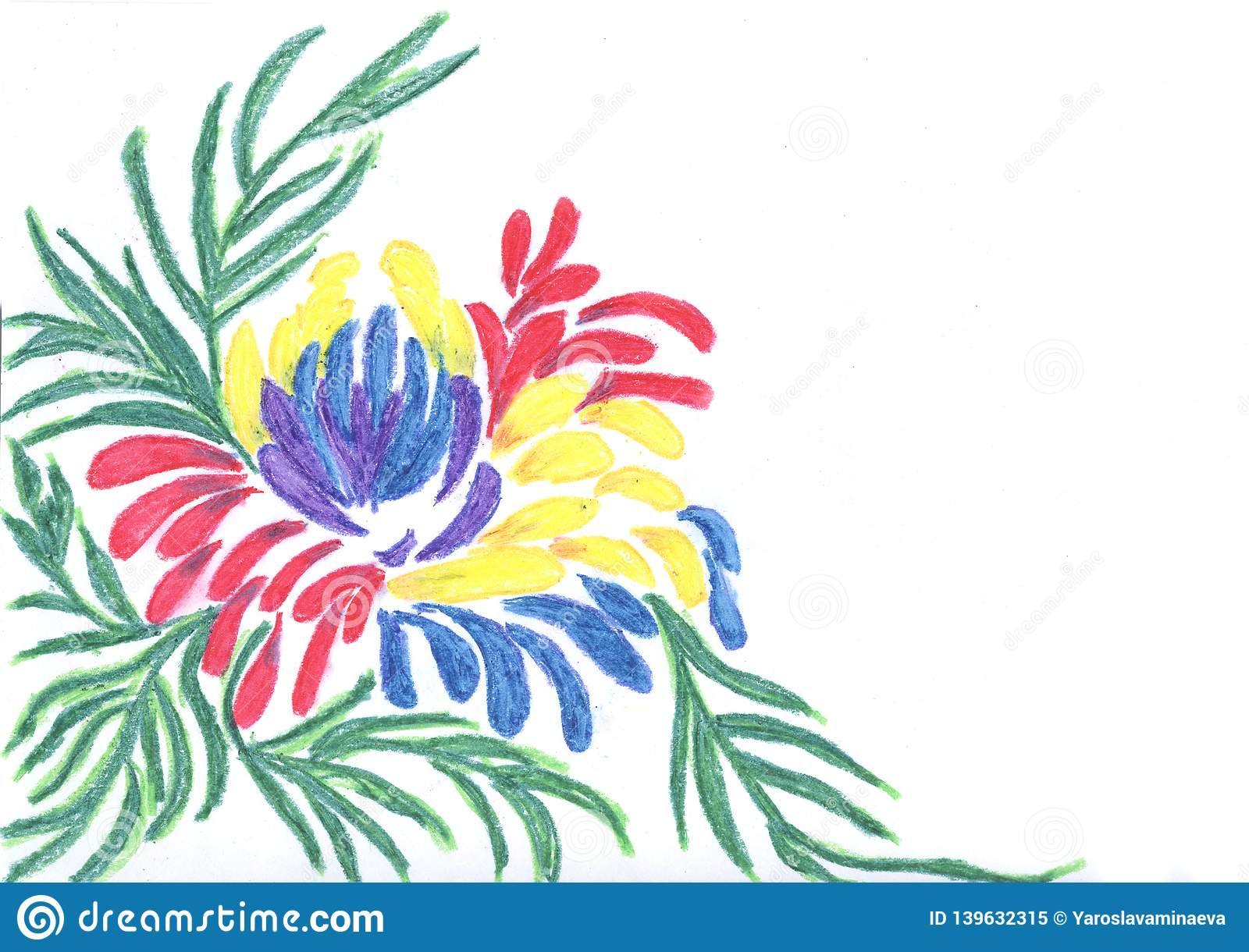 Multi colored flower on a white background pencil drawing blank