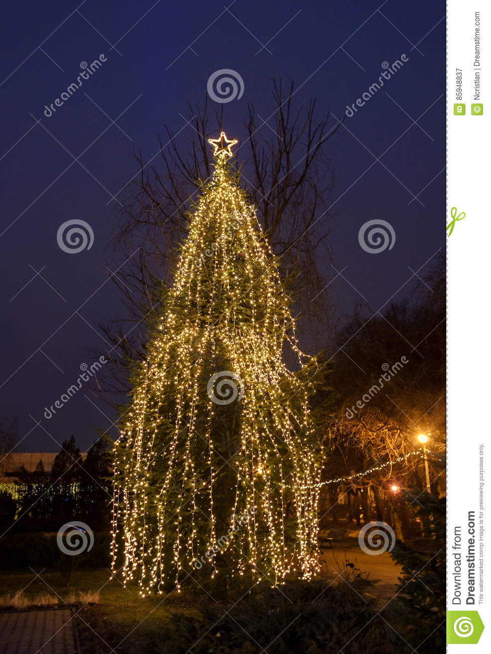Colored Lighted Christmas Tree With Ornaments Outdoor Night Time